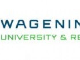 Imares wordt Wageningen Marine Research
